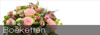 Bloemist bij zuylen tuinzigt breda bloemisterij koolen for Bloemist breda
